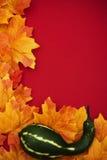 Fall Border Royalty Free Stock Image