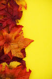 Fall Border Royalty Free Stock Images