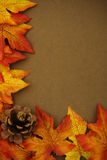 Fall Border Stock Photos