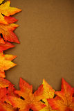 Fall Border Stock Photography