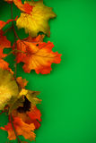 Fall Border Stock Photo