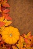 Fall Border Royalty Free Stock Photo