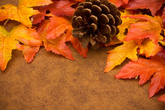 Fall Border Royalty Free Stock Photos