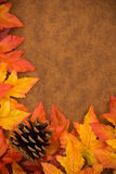 Fall Border Stock Photo