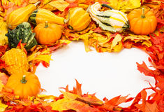 Fall border of colorful leaves Stock Photography