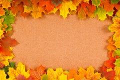 Fall border on corkboard Stock Photos
