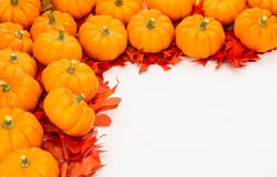 Fall border of small pumpkins Royalty Free Stock Photography