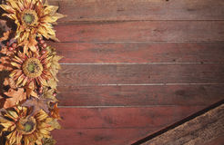 Fall border with sunflowers on grunge red wood background Stock Image