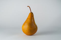 Fall Bosc Pear Stock Images