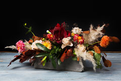 Free Fall Bouquet At Black Background Stock Photography - 98512312