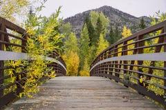 Fall-Brücke Lizenzfreie Stockbilder