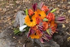 Fall Bridal Bouquet Outside Royalty Free Stock Photos