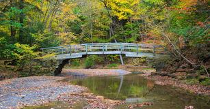 Wooden Bridge over small river, surrounded by autumn foliage on trees Royalty Free Stock Photo