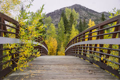 Fall bridge. A bridge over the wood river in north eastern wyoming in the shoshone national forest royalty free stock images