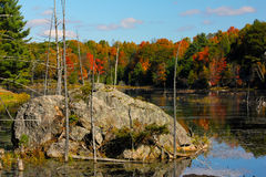 Fall on Buck lake Ontario Royalty Free Stock Images