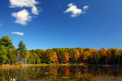 Fall on Buck lake Ontario Royalty Free Stock Image