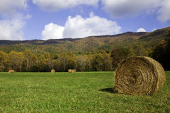 Fall in Cades Cove stock photos