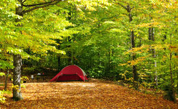 Fall camping royalty free stock images