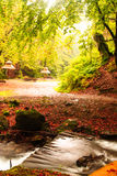 Fall camping with rain Royalty Free Stock Photos