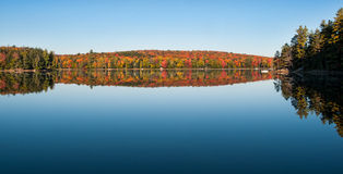 Fall in Canada. Colorful fall leaves in Haliburton Ontario Canada Royalty Free Stock Photo