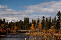 Fall in Canmore, AB Royalty Free Stock Photo