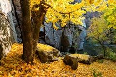 Fall canyon scene Royalty Free Stock Photos
