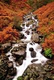 Fall Cascade Royalty Free Stock Photos