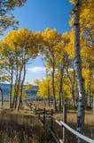 Fall on Casper Mountain Wyoming Stock Photography