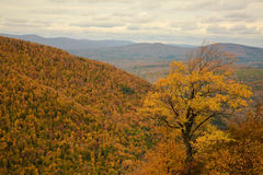 Fall in Catskill mountains. View of Catskills mountains from Hunter mountain, NY stock photos