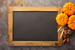 Fall chalkboard copy space with pumpkins. Nuts, wheat stock photography