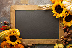 Fall chalkboard copy space with pumpkins and sunflowers Stock Images