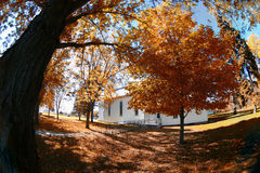 Fall Church Yard. Fall colors in a rural church yard in Minnesota, USA Royalty Free Stock Photography