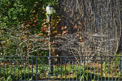 Fall City Lamp Post Royalty Free Stock Images