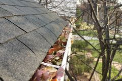 Fall Cleanup - Leaves in Gutter #1 Stock Image
