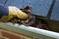 Fall Cleanup - Leaves in Gutter Stock Image