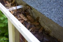 Fall Cleanup - Leaves in Gutter Stock Images