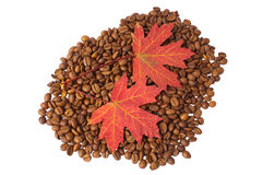 Fall coffee Royalty Free Stock Photography