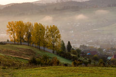 Fall cold fog on hot sunrise in mountains Stock Photos