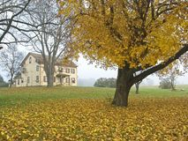 Fall Colonial Stock Image