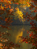 Fall Color. Reflections in water royalty free stock photography