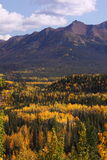 Fall color in Alaska Stock Photo