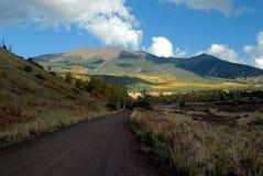 Fall color Arizona near flagstaff. Turning color near Flagstaff, AZ, near Mount Humphreys.  Aspen among the pines Royalty Free Stock Photography