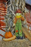 Autumn puppet - an autumn creation Royalty Free Stock Photo