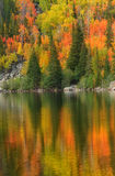 Fall Color on Bear Lake in Rocky Mountain National Park Stock Photos