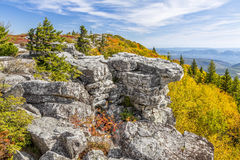Fall Color at Bear Rocks. Colorful fall foliage adorns Bear Rocks at the Dolly Sods Wilderness in the Allegheny Mountains of West Virginia Stock Image