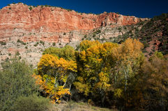 Fall color and bluff Stock Photos