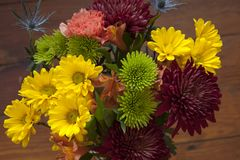 Fall flower bouquet with many colors Stock Photos