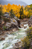 Fall color in Colorado mountain Stock Photos