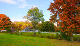 Fall Color in the Country Stock Images