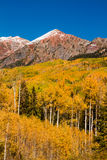 Fall Color in Crested Butte Colorado Stock Image